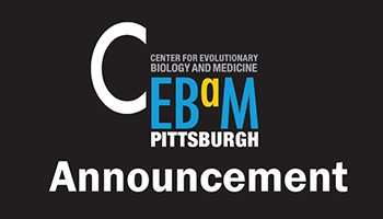 Announcing the CEBaM Catalyst Award Program