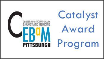 Announcing the 2020 CEBaM Catalyst Award