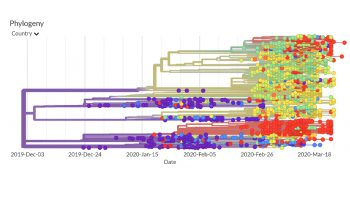Ongoing evolution of the #COVID19 virus